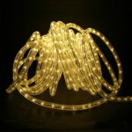 D&D Brand 50FT Warm White LED Rope Light – Expandable to 150 Ft – 120V – 2 Wire -Clear Tubing- UL Listed – Super Sturdy LED50-WW
